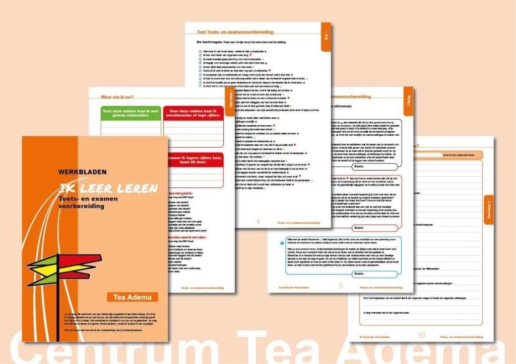 workshop Toets- en examenvoorbereiding